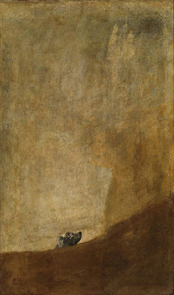 The Dog by Francisco Goya
