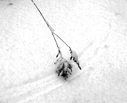 writing on the snow