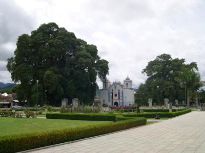 Santa Maria del Tule