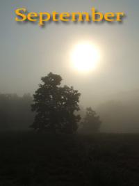 September album cover
