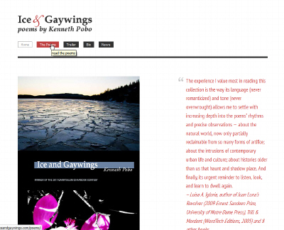 Ice and Gaywings website