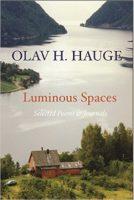 cover of Luminous Spaces